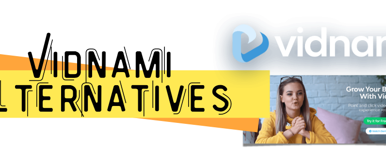 Vidnami Alternatives